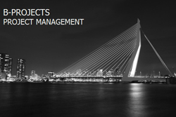 B-Projects project management